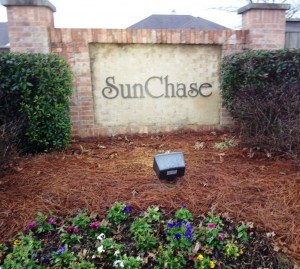 Sun Chase - Check-In Marketing