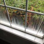 window with condensation present