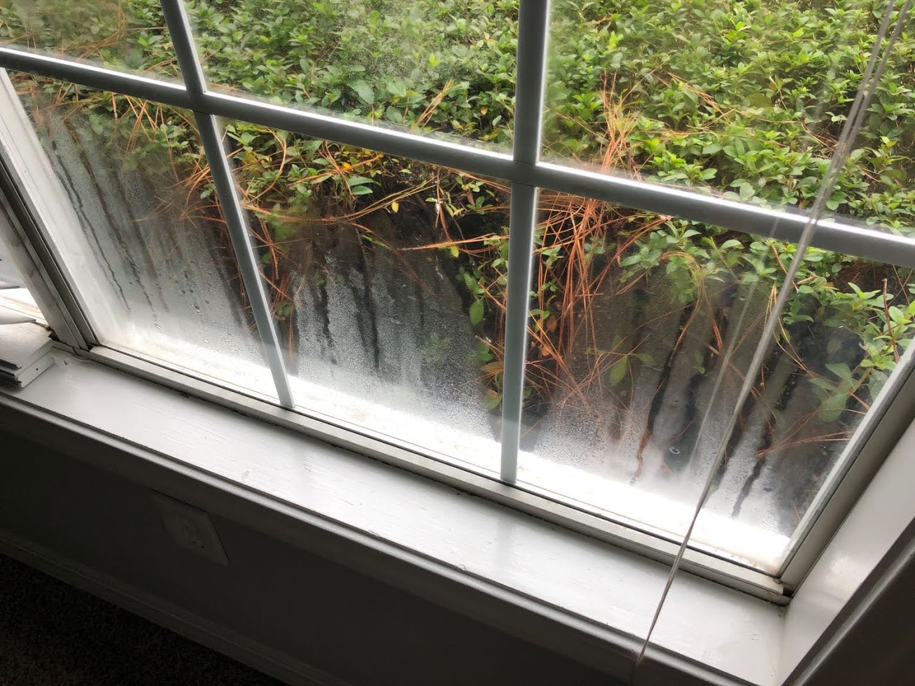 window with condensation present