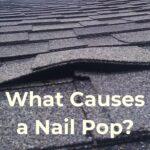Asphalt Shingle Nail Pop